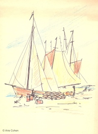 Boats • סירות