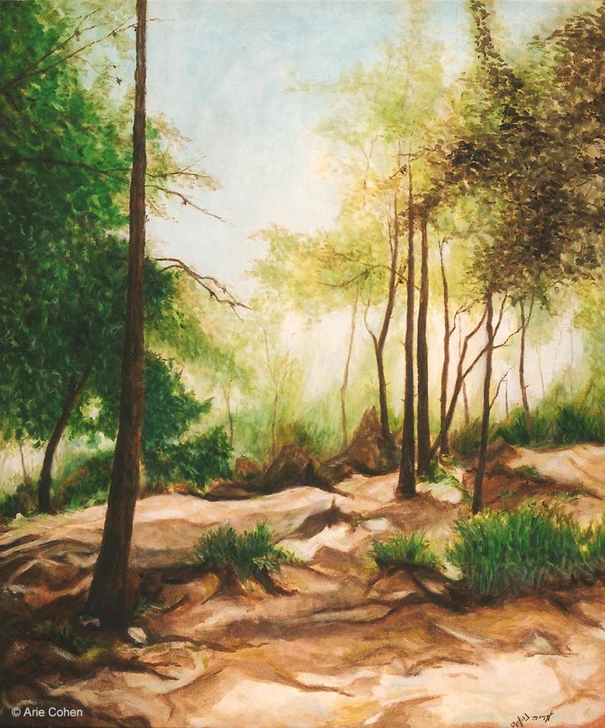The Carmel Forest • נוף ביערות הכרמלOil on Canvas, 65x55cm, 2000