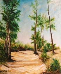 Trail in Bat-Shlomo Forest • שביל ביער בת-שלמה