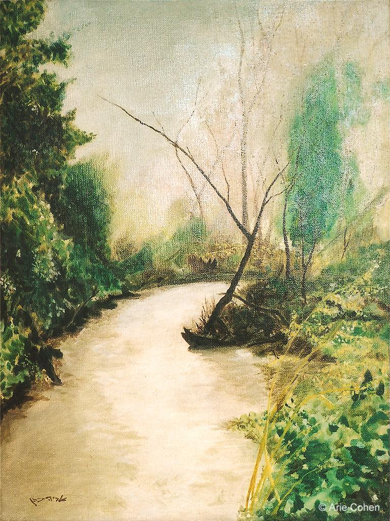The Jordan River • נהר הירדן