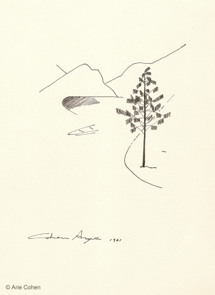 Tree • עץ